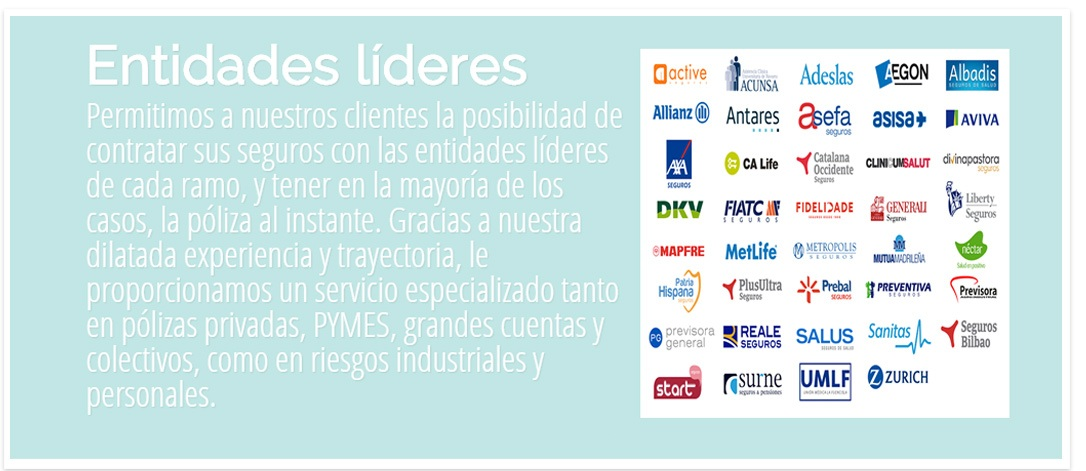 entidades lideres